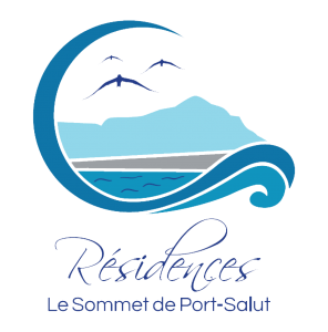 LOGO Vectorise Port Salut background removed